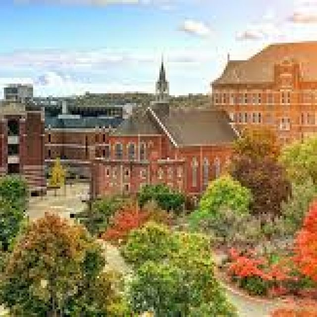 Duquesne University Physician Assistant Program