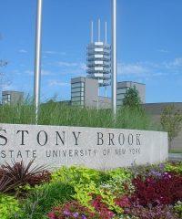 Stony Brook University Physician Assistant Program